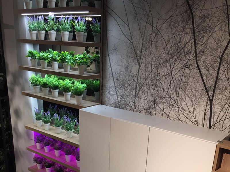 led vegetativo indoor